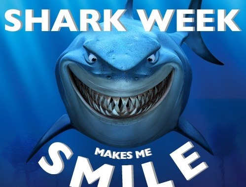 Discovery Channels Most Anticipated Seven Days Of The Year Is Going On Right Now Shark Week An Annual Week Long Event That Has Been Going On